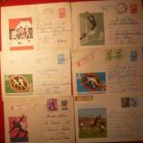 10 Plicuri -Ilustrate -Intreguri -SPORT - 1965- 1975 - Plic Papetarie