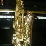 saxofon Parrot