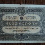 Bancnota Straine - 20 korona 1920