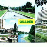 """CP101-49 Oradea: 1 Parcul """"23 August""""; 2Aspect citadin; 3..."""