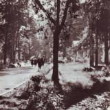 B2758 Baile Moneasa Parcul circulat 1963 RPR