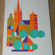 I DELEANU - VALEA MURESULUI - GHID TURISTIC - Carte Monografie
