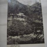C.P.MASIVUL RETEZAT - Cabana,, Gura Zlata'' - Carti Postale Romania dupa 1918