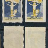 RFL 1931 ROMANIA fiscal pt ajutor Principele Mircea 1 leu - 2 timbre neuzate, danteluri diferite