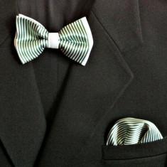 Cravata Barbati - Papioane Papion + Batista Batiste de buzunar [Elegant Casual Fashion Trend - Cravate Unisex Club 2012][BowTie]