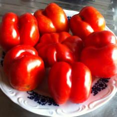 Seminte rosii - ROSII TIP ARDEI - seminte