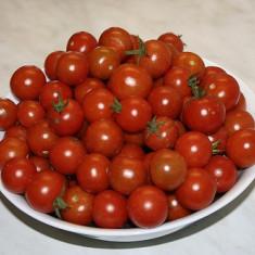 Seminte rosii - ROSII CHERRY - seminte