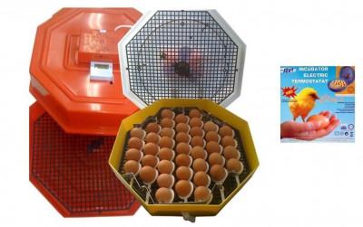 Incubator electric clocitoare 60 oua cleo 5, intoarcere, termostat foto