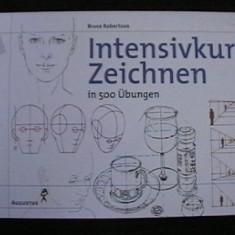 BRUCE ROBERTSON - INTENSIVKURS ZEICHNEN IN 500 UBUNGEN - Album Pictura