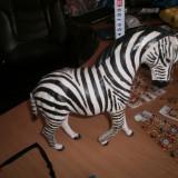 Zebra 27 cm italia veche