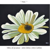 Tablou living, dormitor, hol - Tablou floral 60x50cm - Polen (2) - LIVRARE GRATUITA IN 24-48h - Reproducere