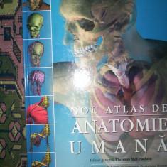 Nou atlas de anatomie umana(an 2006)