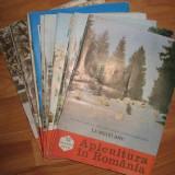 revista APICULTURA IN ROMANIA,colectie completa pe anul 1978 (stuparit,albinelor,stuparului,albinarit) 10 lei/revista