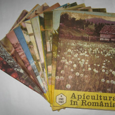 Revista APICULTURA IN ROMANIA, colectie completa pe anul 1987 (stuparit, albinelor, stuparului, albinarit) 8 lei/revista