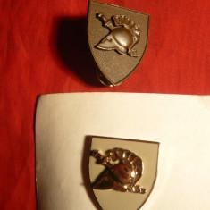 2 Insigne Militare Grecesti cu butoni - Insigna