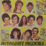 Muzica Populara electrecord, VINIL - Disc vinil pick-up Electrecord AUTOGRAFE MUZICALE 5 V LP rar vechi colectie MAX