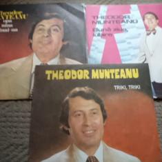 Theodor Munteanu Buna ziua iubire vinyl muzica usoara slagare grecesti - Muzica Pop electrecord, VINIL
