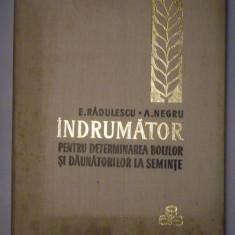 INDRUMATOR PENTRU DETERMINAREA BOLILOR SI DAUNATORILOR LA SEMINTE - E.Radulescu si A.Negru