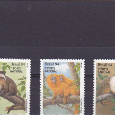 Timbre straine, America Centrala si de Sud - Fauna, maimute, Brazilia.