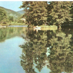 Carti Postale Romania dupa 1918 - AMP4006 Baile Moneasa, lac, RPR