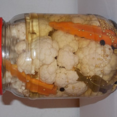 Vand conopida in otet - Conserve