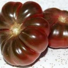 Seminte de rosii - Seminte rosii violete