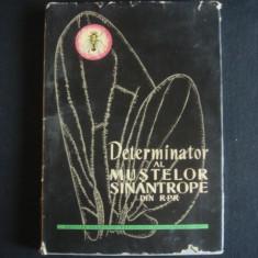 ECATERINA DOBREANU* AURELIA BERTEANU* ADRIANA DUMITREASA - DETERMINATOR AL MUSTELOR SINANTROPE DIN R.P.R. {1962, contine numeroase planse color} - Carte Biologie