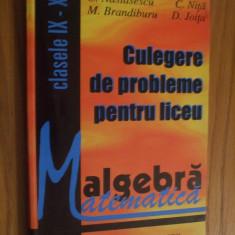ALGEBRA * CULEGERE de PROBLEME cl. IX - XII - C. Nastasescu, C. Nita - 1996 - Culegere Matematica