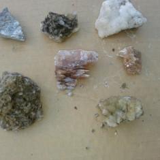 Fosila roca, Naturala - 7 flori de mina de colectie.