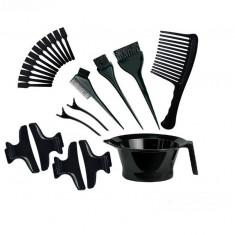 Kit Profesional Pentru Vopsit Parul. Coafor. Frizerie. Trusa Vopsit Parul 23 Ustensile. TH Collection Hair Styling.