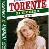 Marie-Anne Desmarest - Surpriza (Ciclul TORENTE, vol III)