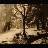 RPR -  Baile Moneasa - Vedere din parc
