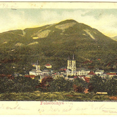 Baia Sprie Felsobanya ilustrata circulata in 1904 - Carte Postala Maramures pana la 1904