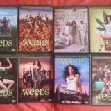 Film serial, Actiune, DVD, Romana - Weeds ( Ierburi ) serial complet, 8 sezoane pe 22 DVD-uri, subtitrate in romana