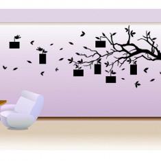 Tapet - Copac cu amintiri_Tatuaj de perete_Stickere décor_WALL-528-Dimensiune: 45 cm. X 110 cm. - Orice culoare, Orice dimensiune