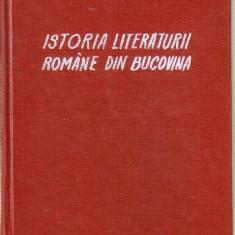 Studiu literar - Constantin Loghin - Istoria literaturii romane din Bucovina