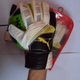 JDZ Manusi portar fotbal Puma Momentta noi PRO. adulti marimea 9 - Echipament portar fotbal, Barbati, Marimi manusi portar: 9
