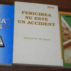 CARTEA VIETII / FERICIREA NU ESTE UN ACCIDENT/ SCRISORI CATRE TINERI - Carti Crestinism