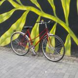 Bicicleta de oras, 21 inch, 28 inch, Numar viteze: 1, Rosu, V-brake - Bicicleta Hercules de oras, de dama
