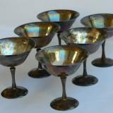 SPLENDIDE CUPE ARGINTATE, Pahare