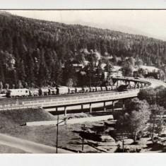 PREDEAL RPR INTRAREA IN PREDEAL, TREN MARFAR, PASARELA - Carte Postala Transilvania dupa 1918, Circulata, Fotografie