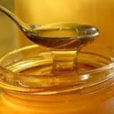 Dulciuri - Vand Miere de Salcam 100% naturala, Productie 2015 !!