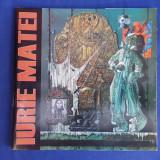 IURIE MATEI - PICTURA ( ALBUM ) - PLOIESTI - 2013