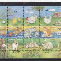 Fauna domestica, gaini, pisici, iepuri, Israel. - Timbre straine, Nestampilat
