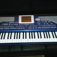 Orga - Korg pa800