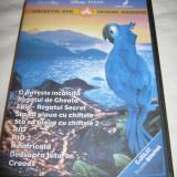 Colectie 10 DVD Filme desene animate dublate in limba romana - Film animatie Altele