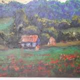 Podolyak Vilmos-Natura cu flori de maci - Pictor roman, Peisaje, Ulei, Impresionism