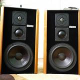 Boxe Technics - Magnat MSP 100 - Boxe
