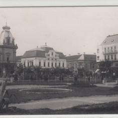 Carte Postala, Necirculata, Printata, Satu Mare - SATU-MARE, PIATA BRATIANU