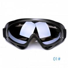 Ochelari unisex ski, snowboard si multe alte sporturi, lentila argintie - Ochelari ski